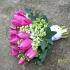 Pink Tulips and White Lylac
