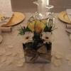 Cube Vase and Petals